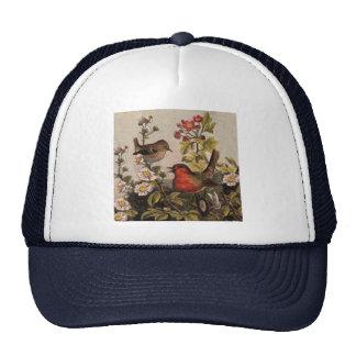 Petirrojos del vintage para los amantes del pájaro gorras de camionero