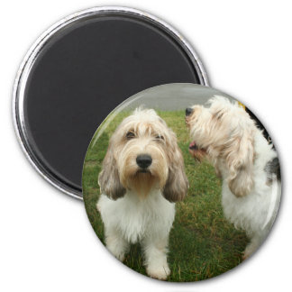 Petit Basette Griffon Vendeen 2 Inch Round Magnet