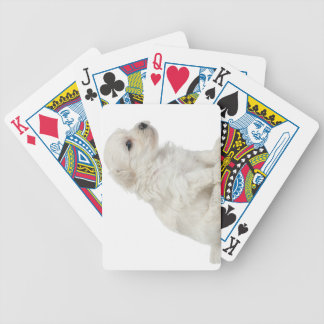 Petit chien lion or Little Lion Dog puppy Bicycle Playing Cards