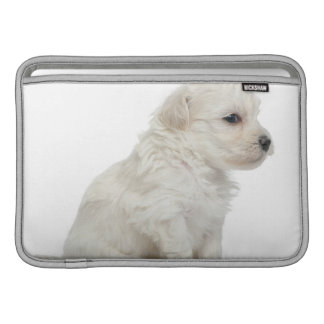 Petit chien lion or Little Lion Dog puppy Sleeve For MacBook Air