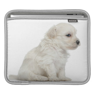 Petit chien lion or Little Lion Dog puppy Sleeves For iPads