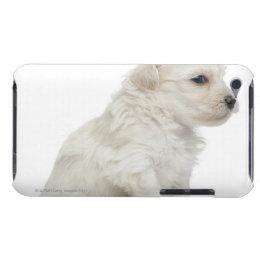 Petit chien lion or Little Lion Dog puppy iPod Case-Mate Case