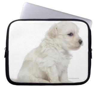 Petit chien lion or Little Lion Dog puppy Laptop Computer Sleeve
