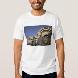 Petit Palais. París. Francia Polera