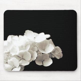 Petite White Hydrangea Flower Black Background Mouse Pad