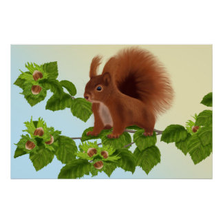 "PetitRose ""Squirrel on Hazelnut twig"" , Poster"