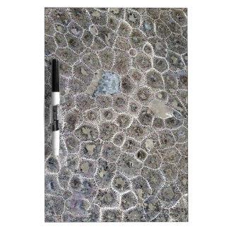 Petoskey Stone, Pure Michigan! Dry Erase Board