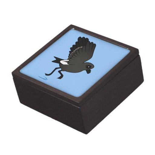 Petrel de la tormenta de la lixiviación (alboroto) cajas de joyas de calidad