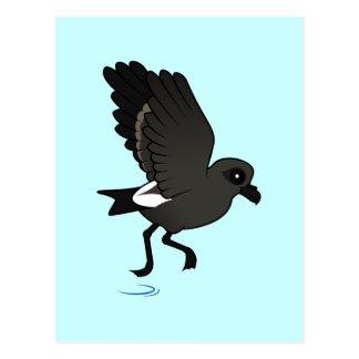 Petrel de la tormenta de la lixiviación (alboroto) postal