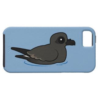 Petrel de la tormenta de la lixiviación (nadada) iPhone 5 fundas