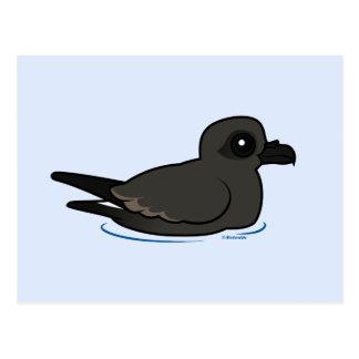Petrel de la tormenta de la lixiviación (nadada) postal