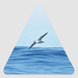 Petrel In Flight Triangle Sticker