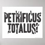 ¡Petrificus Totalus! Póster