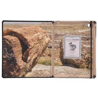 PETRIFIED DESERT COVER FOR iPad