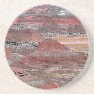 Petrified Forest 2 Sandstone Coaster