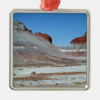 Petrified Forest 3 Metal Ornament