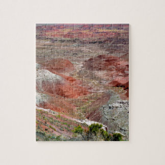 Petrified Forest 4 Jigsaw Puzzle