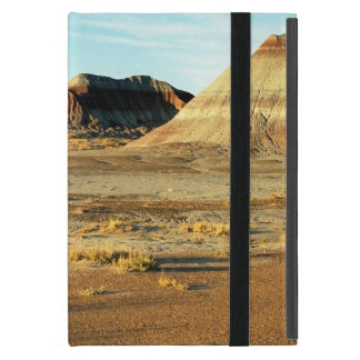 Petrified Forest Desert Cover For iPad Mini