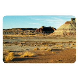 Petrified Forest Desert Magnet