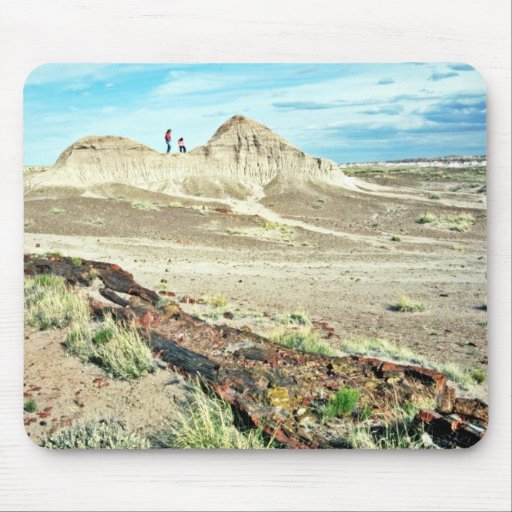 Petrified Forest - Desert National Park Mouse Pad