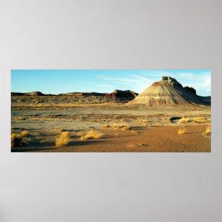 Petrified Forest Desert print
