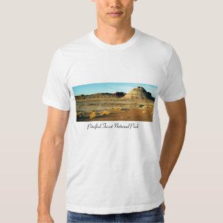 Petrified Forest Desert T Shirt