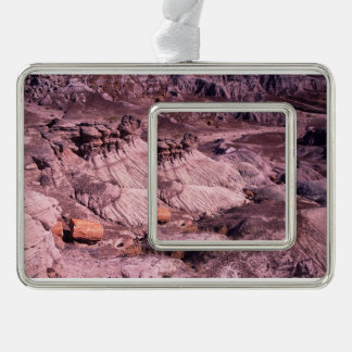 Petrified Forest National Park Christmas Ornament