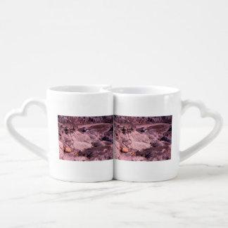 Petrified Forest National Park Coffee Mug Set
