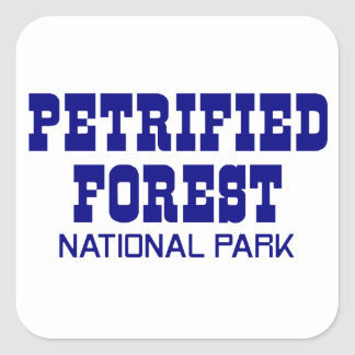 Petrified Forest National Park Square Sticker