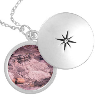 petrified forest round locket necklace