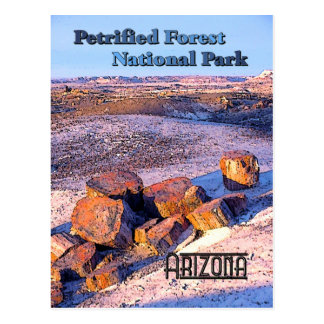 Petrified Forest Vintage Style Postcards