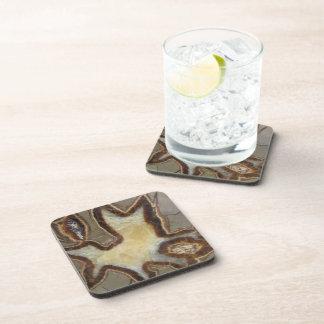 Petrified Mud Rock Drink Coaster
