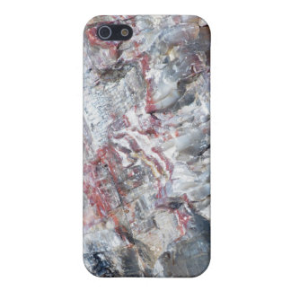 Petrified wood case for iPhone 5
