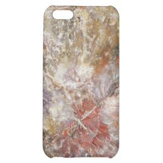 Petrified wood cover for iPhone 5C
