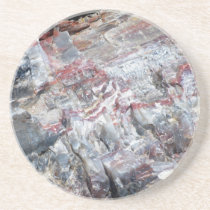 Petrified Wood Drink Coaster