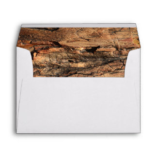 Petrified Wood Envelope