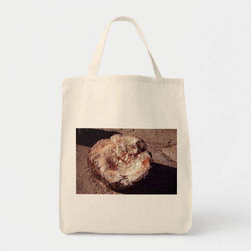 Petrified Wood Grocery Tote Bag