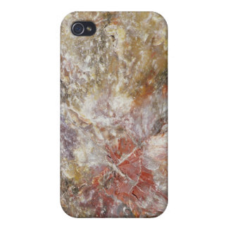 Petrified wood iPhone 4/4S cover