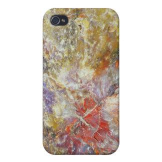 Petrified wood iPhone 4 case