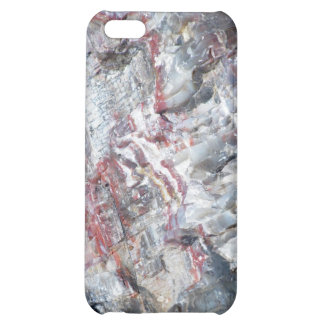 Petrified wood iPhone 5C cover