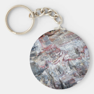 Petrified wood keychain