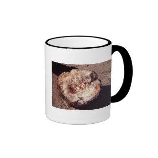 Petrified Wood Ringer Coffee Mug