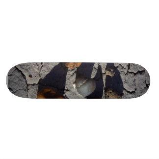 Petrified Wood Skate Board