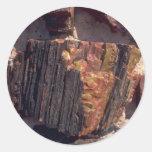 Petrified wood wall round stickers