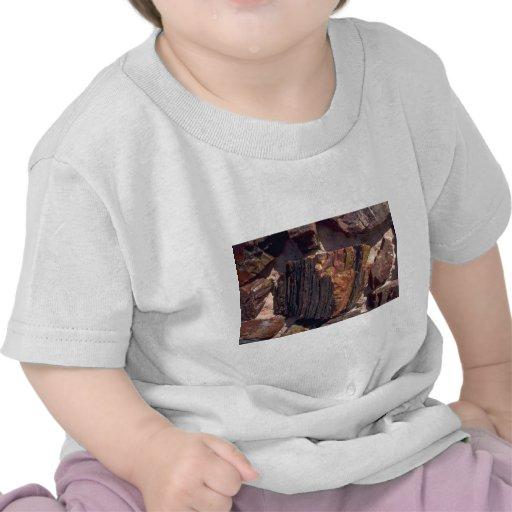 Petrified wood wall t shirts