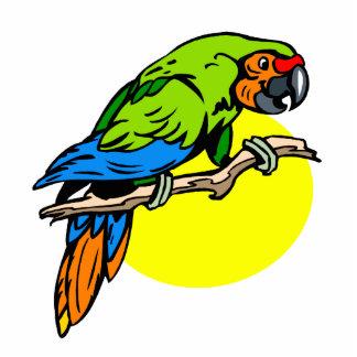 Petron Parrot Acrylic Cut Out