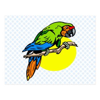Petron Parrot Postcard