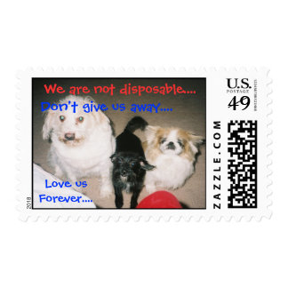 Pets are Forever Postage Stamp
