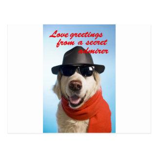 Pets Dog Secret Admirer Valentine Jitka Postcard
