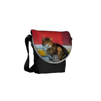 Pets - Tabby Cat by Red Door Courier Bags